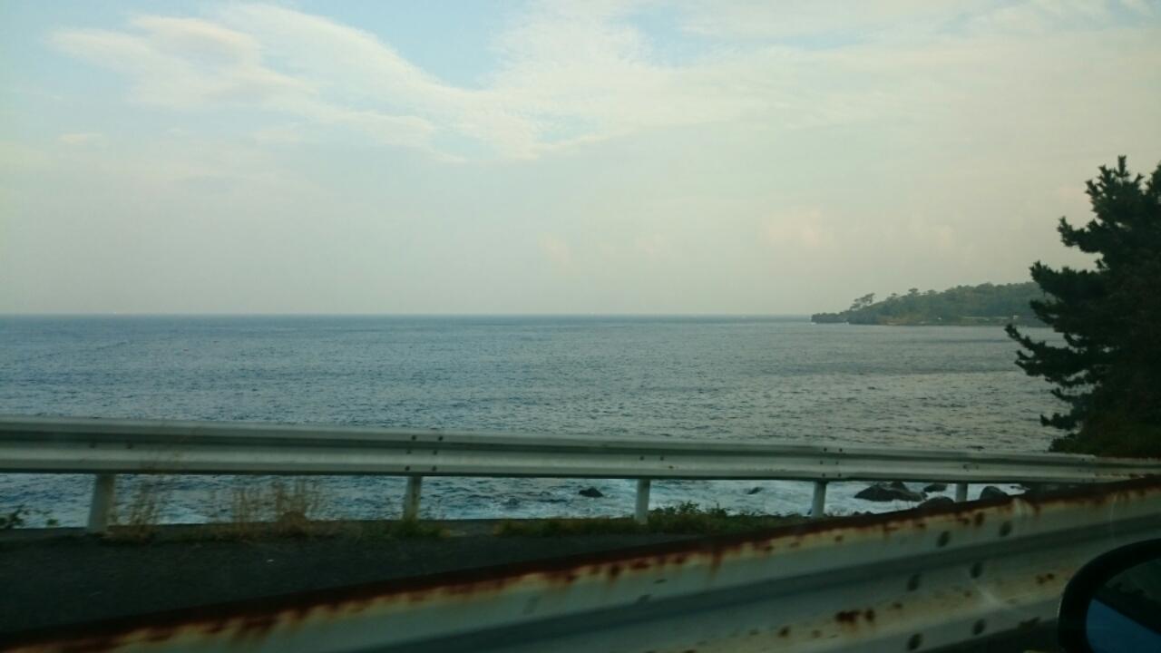 伊豆の海へ
