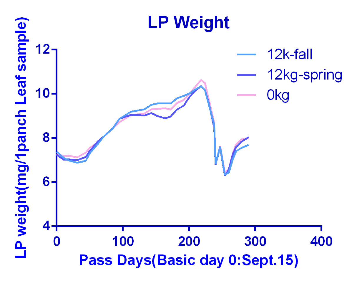 LP Weight 12kg