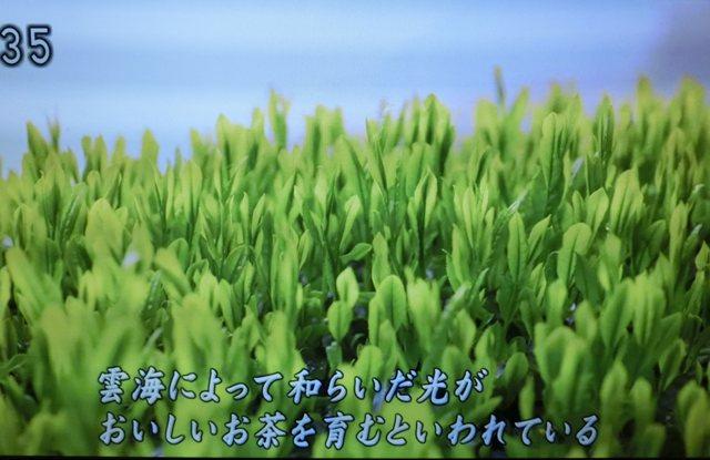 aa8_2016053020435353b.jpg