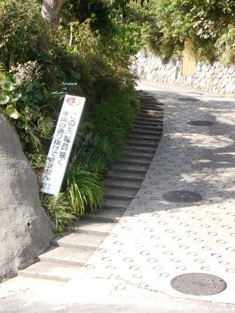 S鎌倉山DSCF3656