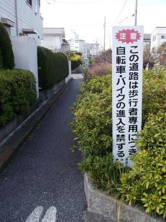 S鎌倉山DSCF3662