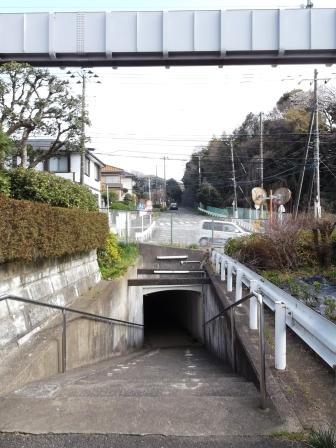 S鎌倉山DSCF3663