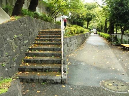 22江戸川公園DSCF2237
