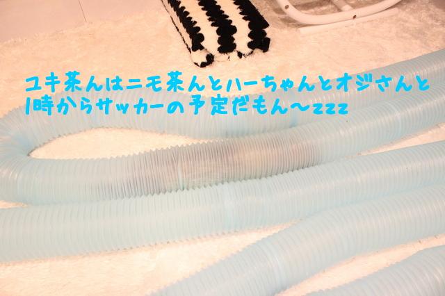 SU_zQ6awl0C9yzV1468669345_1468669425.jpg
