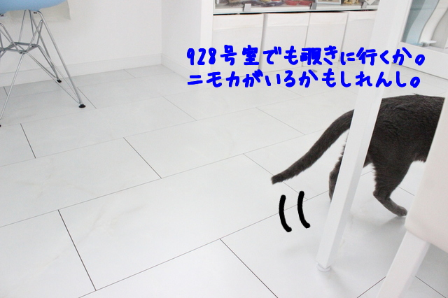 xmkIeUHotauINIU1475316439_1475316579.jpg