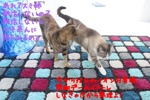 ylTTICONymWgYLX1471429769_1471429958.jpg