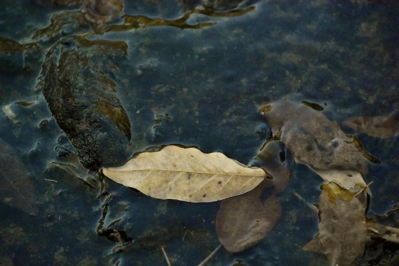 水面の造形