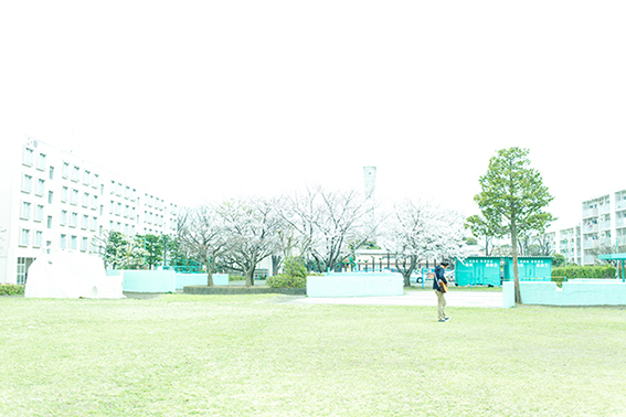 02_macchann_s-17.jpg