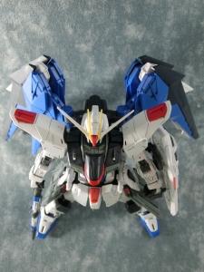 MG-FREEDOM-Ver2-0113.jpg