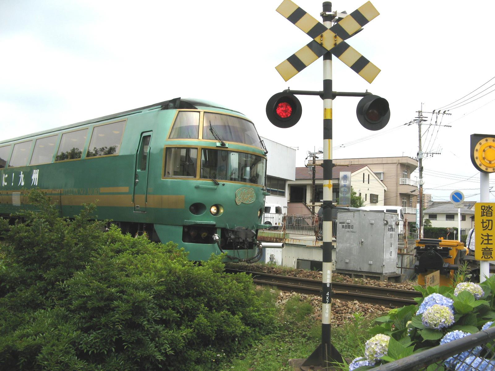 ajisai-yufuin.jpg