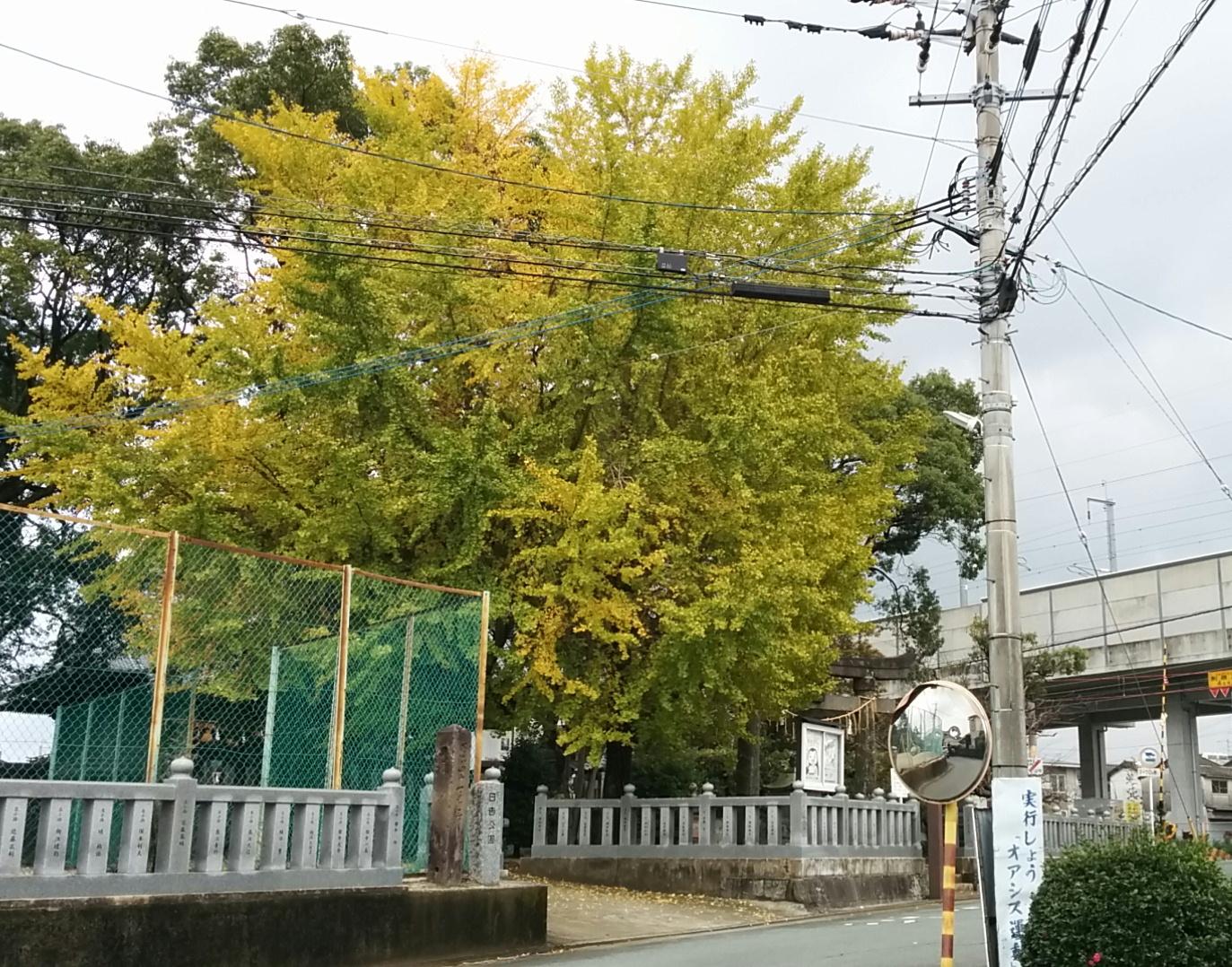 ichou-hjinja.jpg
