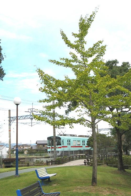 ichou-nishi500x751_20161109192214ac7.jpg