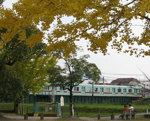 tamatare-train1.jpg