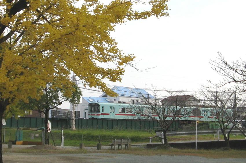 tamatare-train2.jpg