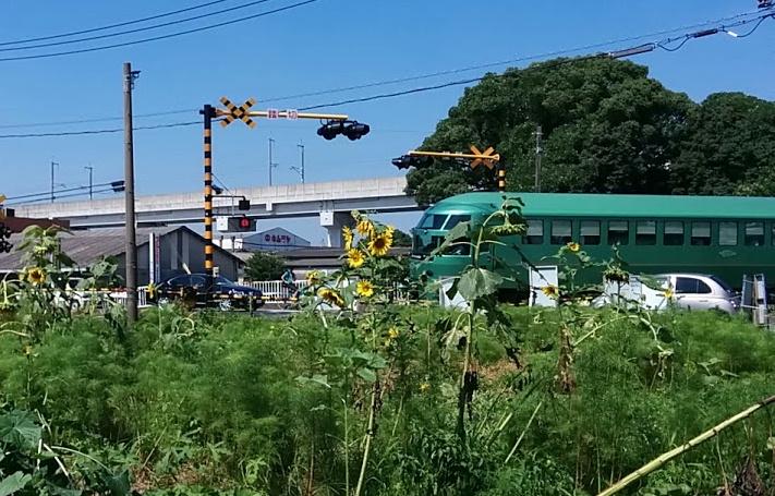yufuin-hamawari.jpg
