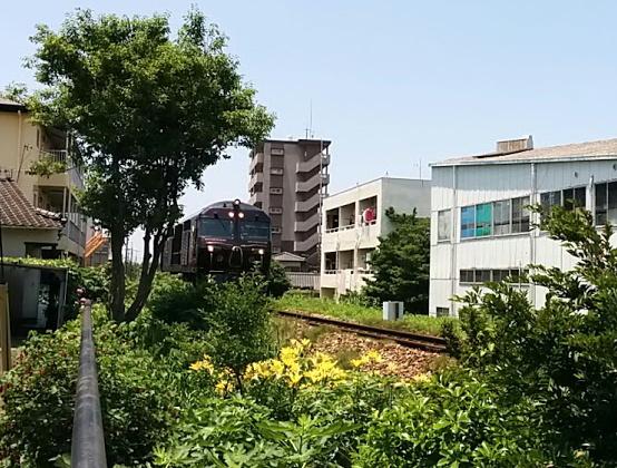 yuri-7star1.jpg