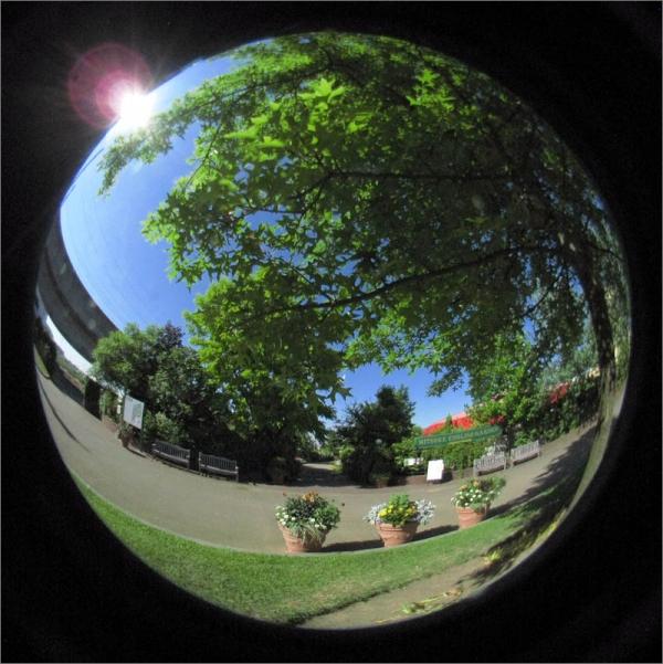 20160620-05-IMG_5092-001.jpg
