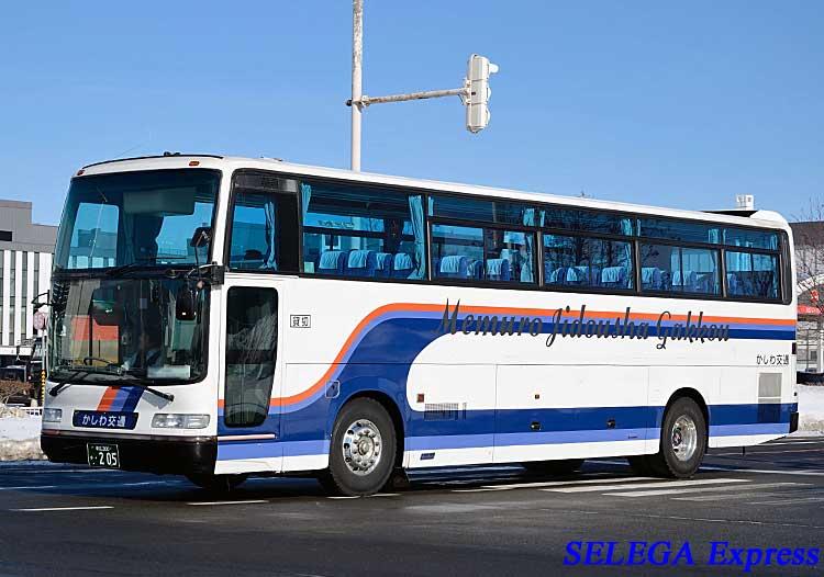 kashiwa205.jpg