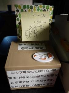 熊本で被災した猫ちゃん募金