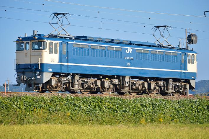 DSC_0682-2