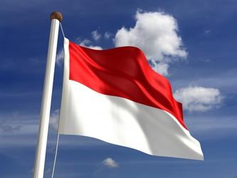 インドネシア、中国含む違法外国漁船を沈没させ独立記念日を祝う