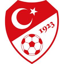 turkey football emblem