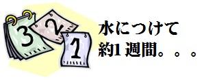 20160708_007.jpg