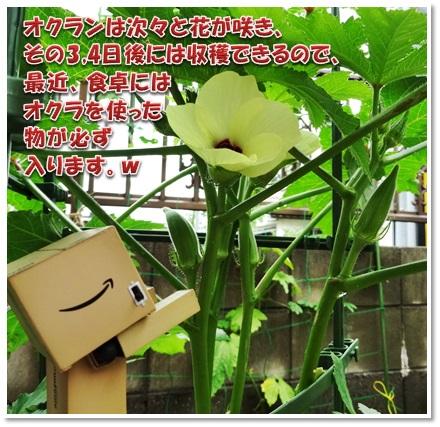20160712_015.jpg