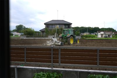 うらの畑2
