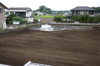 うらの畑3