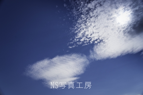 _DSB7279.jpg