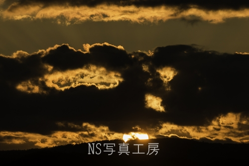 _DSB8136.jpg