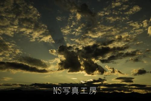_DSZ9592.jpg