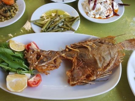 肝も美味しいらしいのにこの魚・・・