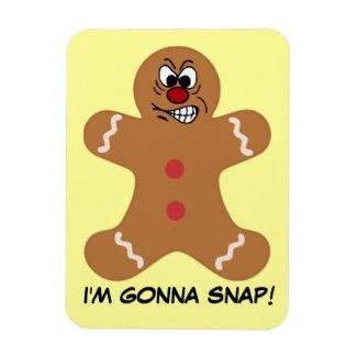 angry_gingerbread_man_cookie_magnet-rb41d0311743d486687cb122b0959dec7_ambom_325.jpg