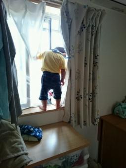 こばぶが窓にいた
