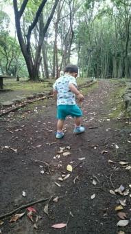 こばぶ公園を散歩