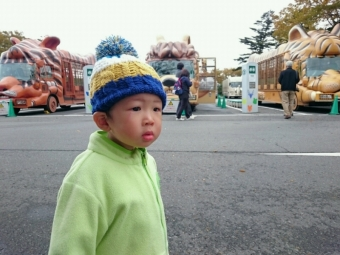 こばぶin富士サファリパーク