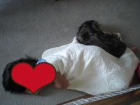 娘と犬昼寝