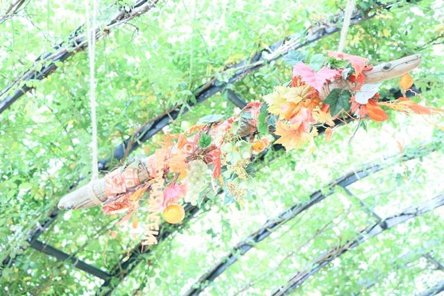 IMG_0041 - コピー