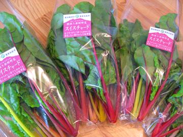 2016春野菜10