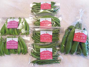 2016春野菜11