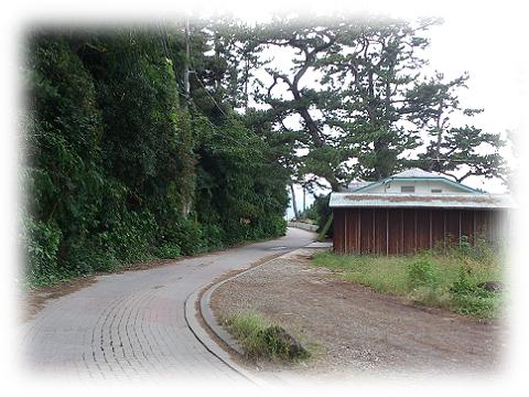 161016hatsushima1.png