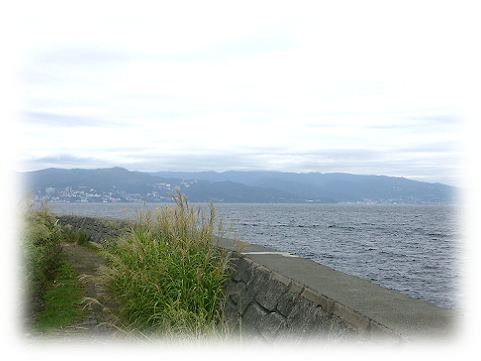 161019hatsushima3.png