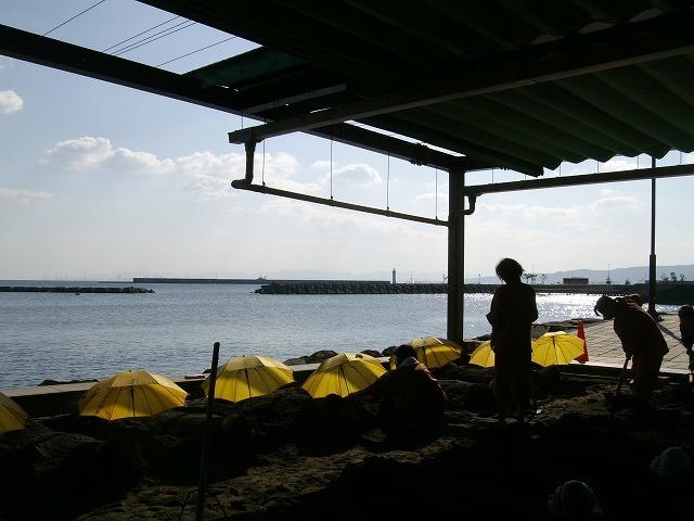 11月3日海浜3