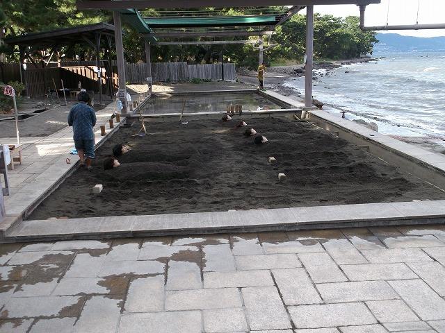 11月9日海浜1