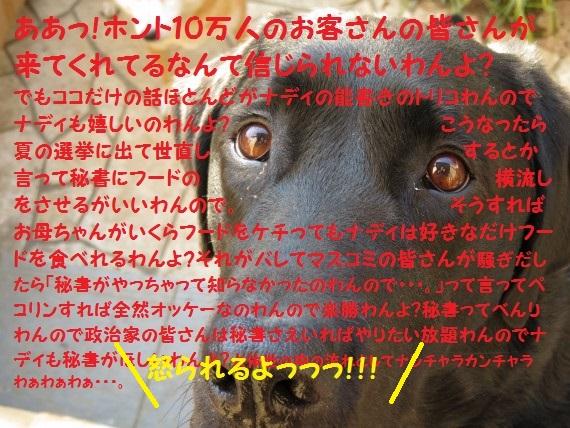 100000-013.jpg