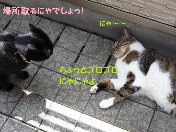 20160501-04.jpg