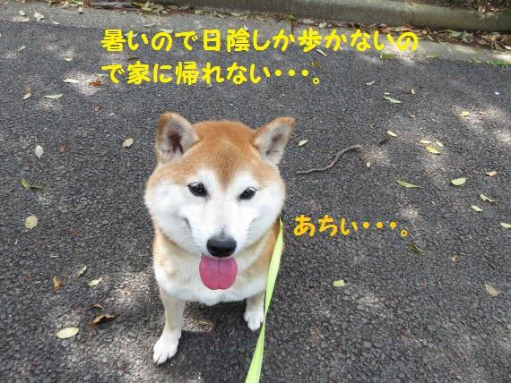20160507-00.jpg