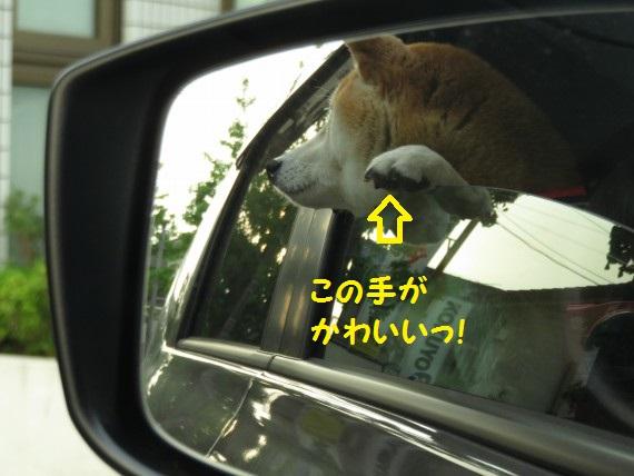 20160510-01.jpg
